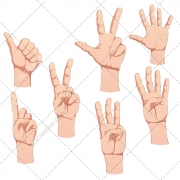 human hand, poses, hands, sign, symbol, counting, thumb up, thumb down, download, buy