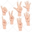 human hand, poses, hands, sign, symbol, counting, thumb up, thumb down, download, buy