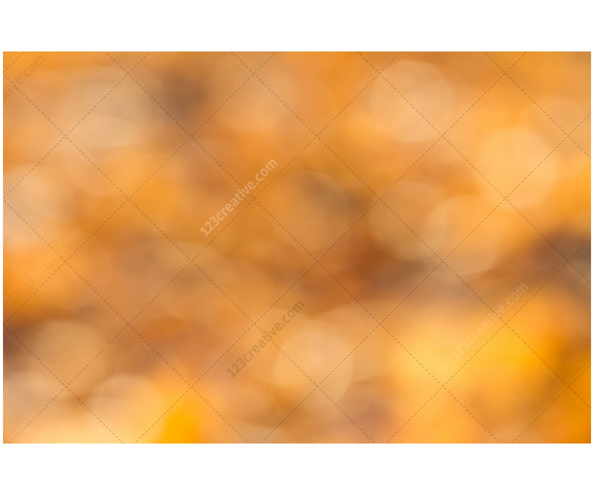 Fall Colors Background Abstract