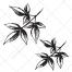 leaves vector, tree leafs vector, drawing leaf vector