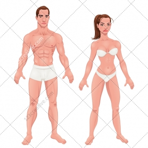 Man and woman in underwear vector