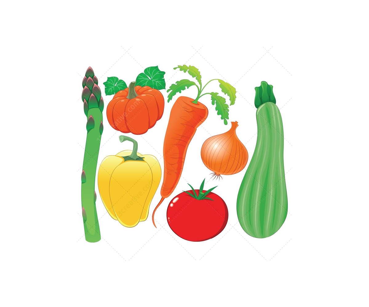 Harvest illustration and garden vectors - buy vector pack ...