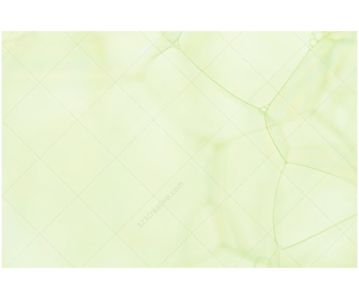light gray background design - photo #32