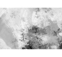 25 Black and white grunge textures pack (digitized)