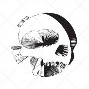 Futuritic 3D skull vector