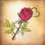 free rose vector illustration