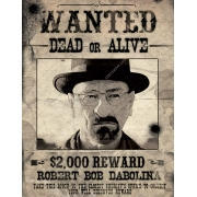 Most wanted poster template