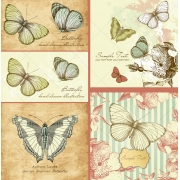 Vintage butterfly vector illustrations