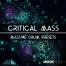 drum massive patches, Critical Mass - Massive Drum Presets, massive synth bank