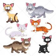 Cartoon cat illustration vectors
