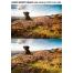 scratch photo effect photoshop, grunge overlay texture