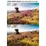 Photoshop overlay textures, grunge photo effect photoshop