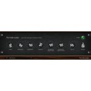 Vacuum tube bass enhancer plugin, VST plug-in, Analog vacuum tube plugin, saturator VST effect plugin