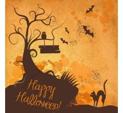 11 Halloween vector illustrations and cobweb vectors
