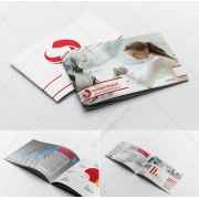 Red Business report brochure template, indesign brochure template