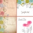floral vector graphics, floral card design templates, field flower vectors
