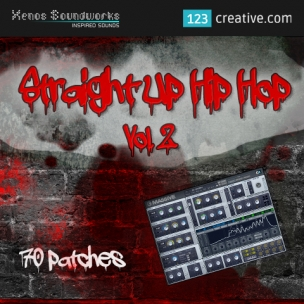 Straight Up Hip Hop Vol.2 - Massive presets