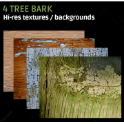 4 Tree bark textures (high resolution)