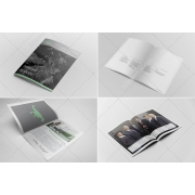 Annual Report Design template, Annual Report InDesign Template