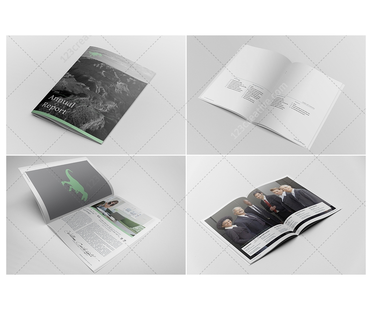 annual report design indesign template professional company brochure template business. Black Bedroom Furniture Sets. Home Design Ideas