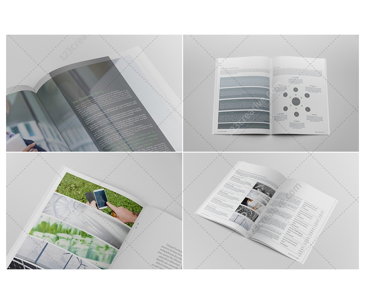 Indesign Brochure: InDesign Template. Professional