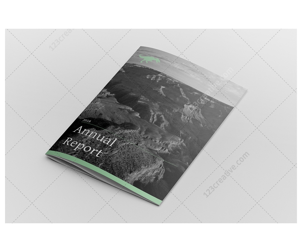 annual financial report template