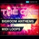 Bigroom House Midi Loops, Download House Midi Loops, Electro House Midi Loops