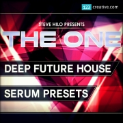 Deep Future House - Serum presets