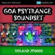 Roland JP8000 presets, Roland JP 8000 patches, Goa Psytrance Soundset, Psytrance synthesizer presets