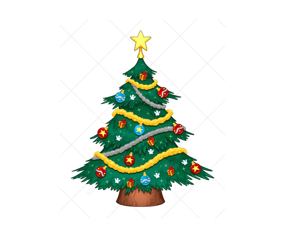 Buy Live Christmas Tree
