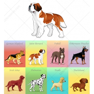 Realistic dog vector pack