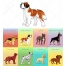 realistic dog vector pack, dog vector design