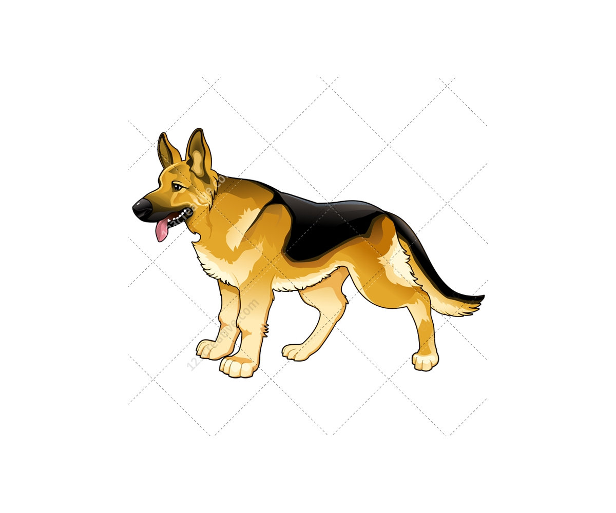 Realistic dog vector p...