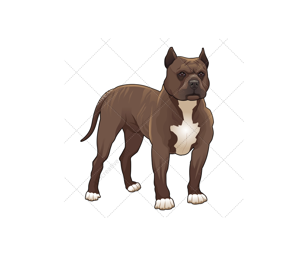 Realistic dog vector pack - animal vector graphics ...