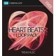 beat loops free, beat samples free, beat samples download