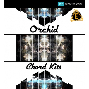 Orchid Chord Kit - synth chord samples