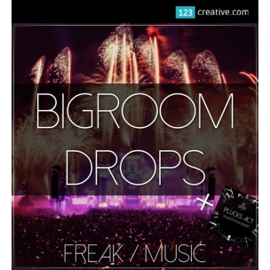 Big Room Drops - loops, samples, MIDI sequences, Sylenth1 presets