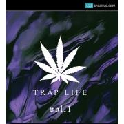Trap loops one-shots vocals, hip hop vocals, future bass loops