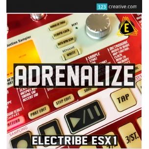 Adrenalize - sample pack & Electribe ESX-1 samples sound bank