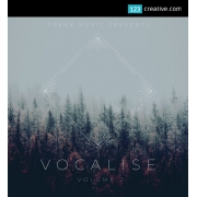 Vocalize Vol.2 - vocal samples / vocal instruments