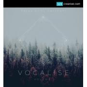 Vocalize Vol.2 - vocal samples / vocal instruments