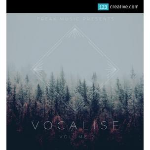 Vocalise Vol.2 - vocal samples / vocal instruments