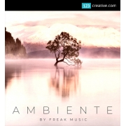 Ambiente - MIDI Kits, WAV Loops, Spire Presets, drum and FX samples