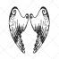 Wings pack 1